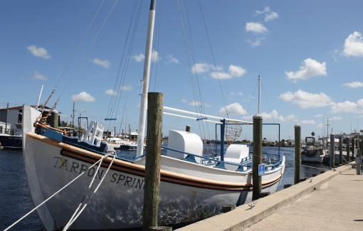 Private Fishing Session in Miami Florida